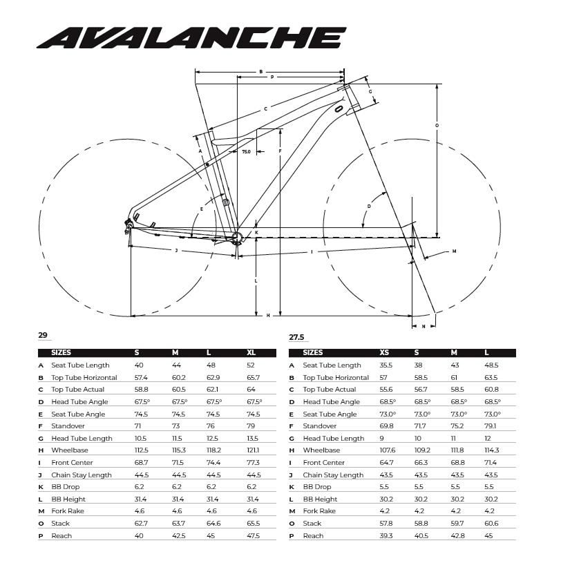 Avalanche Sport -